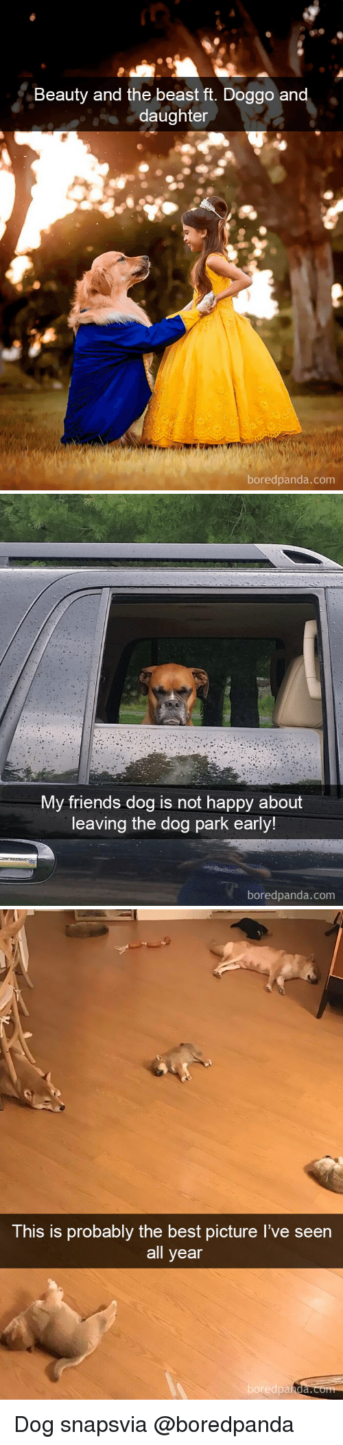 Dog Park: Beauty and the beast ft. Doggo an  daughter  boredpanda.com   My friends dog is not happy about  leaving the dog park early!  boredpanda.com   This is probably the best picture I've seen  all year  boredpa  nda. Dog snapsvia @boredpanda