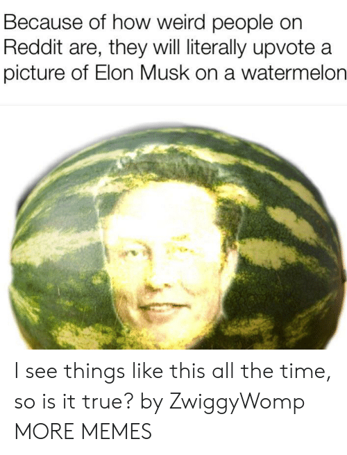 is-it-true: Because of how weird people on  Reddit are, they will literally upvote a  picture of Elon Musk on a watermelon I see things like this all the time, so is it true? by ZwiggyWomp MORE MEMES
