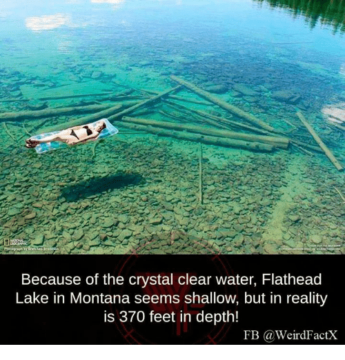 clear water: Because of the crystal clear water, Flathead  Lake in Montana seems shallow, but in reality  is 370 feet in depth!  FB Ga Weird FactX