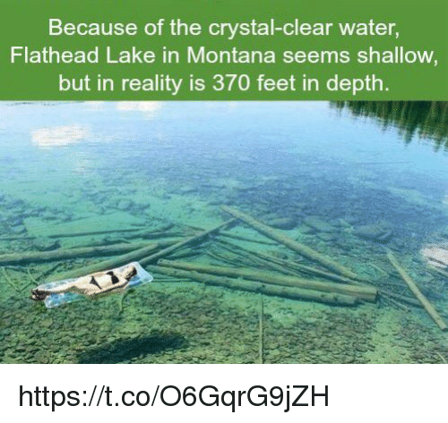 clear water: Because of the crystal-clear water,  Flathead Lake in Montana seems shallow  but in reality is 370 feet in depth. https://t.co/O6GqrG9jZH