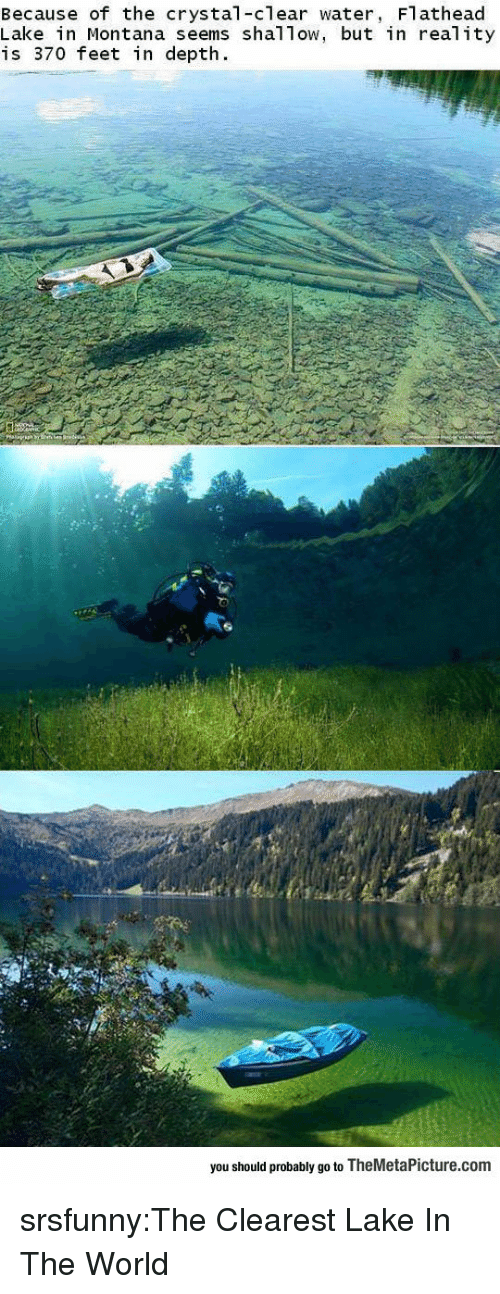 clear water: Because of the crystal-clear water, Flathead  Lake in Montana seems shal Tow, but in real ity  is 370 feet in depth.  you should probably go to TheMetaPicture.com srsfunny:The Clearest Lake In The World