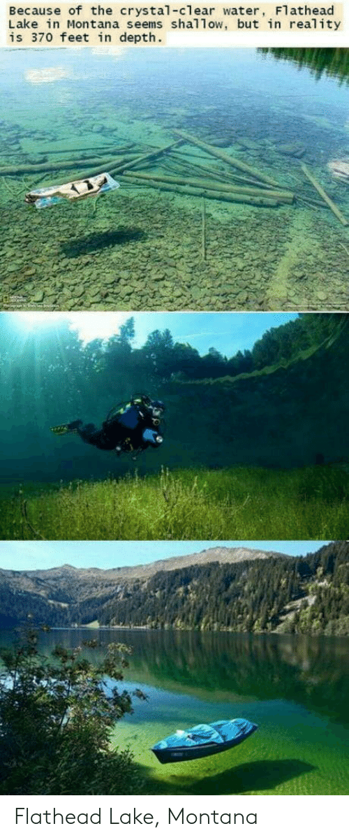 clear water: Because of the crystal-clear water, Flathead  Lake in Montana seems shallow, but in reality  is 370 feet in depth. Flathead Lake, Montana