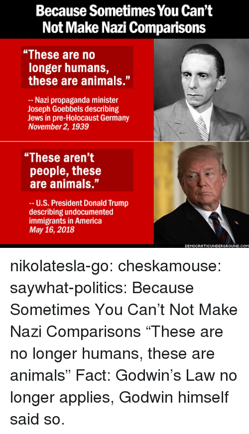 "ots: Because Sometimes You Can't  Not Make Nazi Comparisons  ""These are no  longer humans,  these are animals.""  Nazi propaganda minister  Joseph Goebbels describing  Jews in pre-Holocaust Germany  November 2, 1939  ""These aren't  people, these  are animals.""  -- U.S. President Donald Trump  describing undocumented  immigrants in America  May 16, 2018  EMOCRATICUNDERGRO  UND.C nikolatesla-go:  cheskamouse:  saywhat-politics:    Because Sometimes You Can't Not Make Nazi Comparisons   ""These are no longer humans, these are animals""  Fact: Godwin's Law no longer applies, Godwin himself said so."