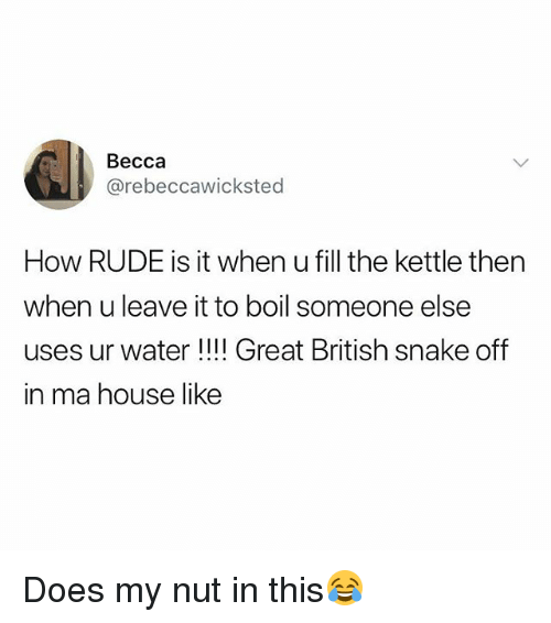 Rude, House, and Snake: Becca  @rebeccawicksted  How RUDE is it when u fill the kettle then  when u leave it to boil someone else  uses ur water !!!! Great British snake off  in ma house like Does my nut in this😂