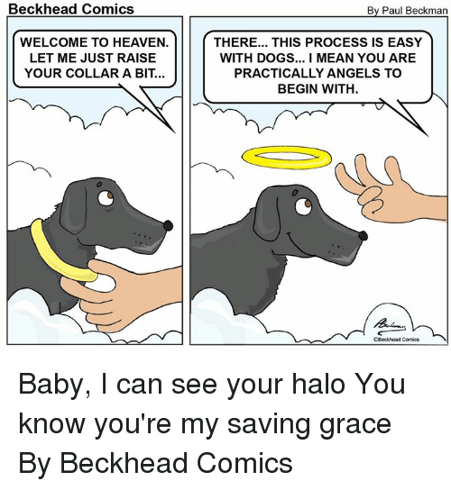 Dank, Dogs, and Halo: Beckhead Comics  By Paul Beckman  WELCOME TO HEAVEN.  LET ME JUST RAISE  YOUR COLLAR A BIT...  THERE... THIS PROCESS IS EASY  WITH DOGS...I MEAN YOU ARE  PRACTICALLY ANGELS TO  BEGIN WITH  CBeckhead Comica Baby, I can see your halo You know you're my saving grace  By Beckhead Comics
