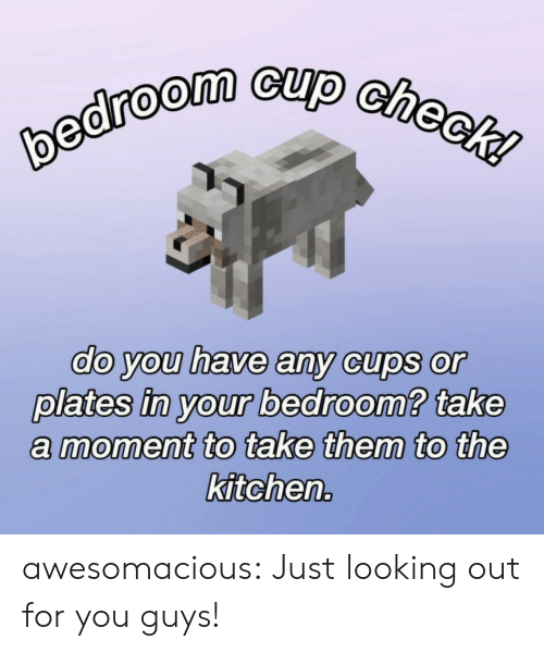 looking out: bedroom cup check!  do you have any cups or  plates in your bedroom? take  moment to take them to the  kitchen. awesomacious:  Just looking out for you guys!