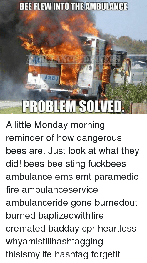 Fire, Memes, and Sting: BEE FLEWINTO THEAMBULANCE  AMBU  PROBLEM SOLVED A little Monday morning reminder of how dangerous bees are. Just look at what they did! bees bee sting fuckbees ambulance ems emt paramedic fire ambulanceservice ambulanceride gone burnedout burned baptizedwithfire cremated badday cpr heartless whyamistillhashtagging thisismylife hashtag forgetit