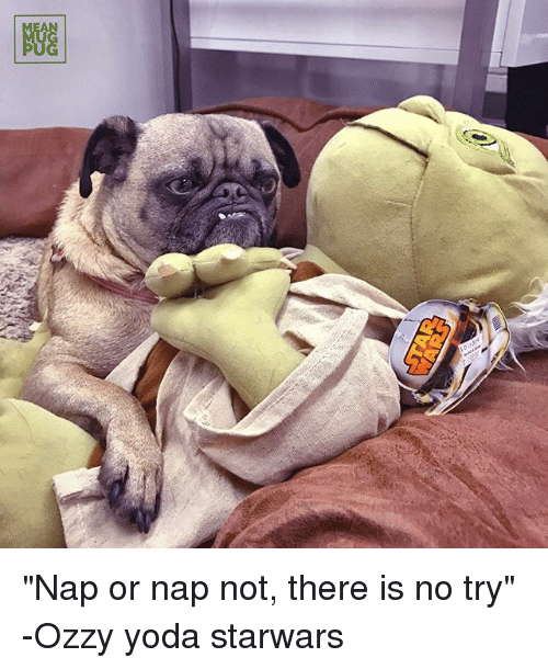 "there is no try: BEE  NGG ""Nap or nap not, there is no try"" -Ozzy yoda starwars"