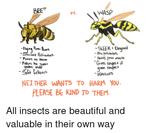 pest: BEE  WASP  SLEEK Eleaont  cient Polli nators  Also pollinales  Hants Pest insects  Gives respeci  given respact  Muons no harm  stutF  Pellows  NEI THER WANTS TO HARM YOU  LEASE BE KIND TO THEM All insects are beautiful and valuable in their own way