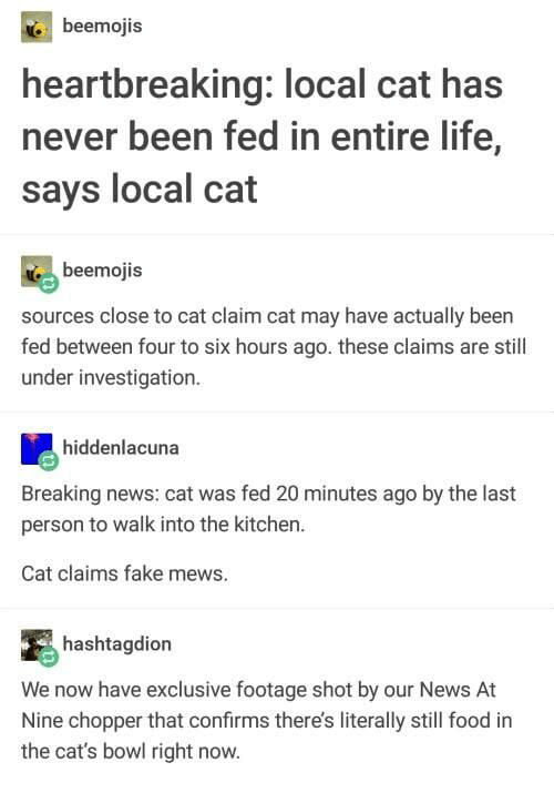 chopper: beemojis  heartbreaking: local cat has  never been fed in entire life,  says local cat  beemojis  sources close to cat claim cat may have actually been  fed between four to six hours ago. these claims are still  under investigation.  hiddenlacuna  Breaking news: cat was fed 20 minutes ago by the last  person to walk into the kitchen.  Cat claims fake mews.  hashtagdion  We now have exclusive footage shot by our News At  Nine chopper that confirms there's literally still food in  the cat's bowl right now.