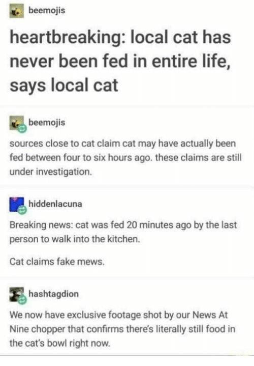 chopper: beemojis  heartbreaking: local cat has  never been fed in entire life,  says local cat  beemojis  sources close to cat claim cat may have actually been  fed between four to six hours ago. these claims are stil  under investigation.  hiddenlacuna  Breaking news: cat was fed 20 minutes ago by the last  person to walk into the kitchen.  Cat claims fake mews.  hashtagdion  We now have exclusive footage shot by our News At  Nine chopper that confirms there's literally still food in  the cat's bowl right now.
