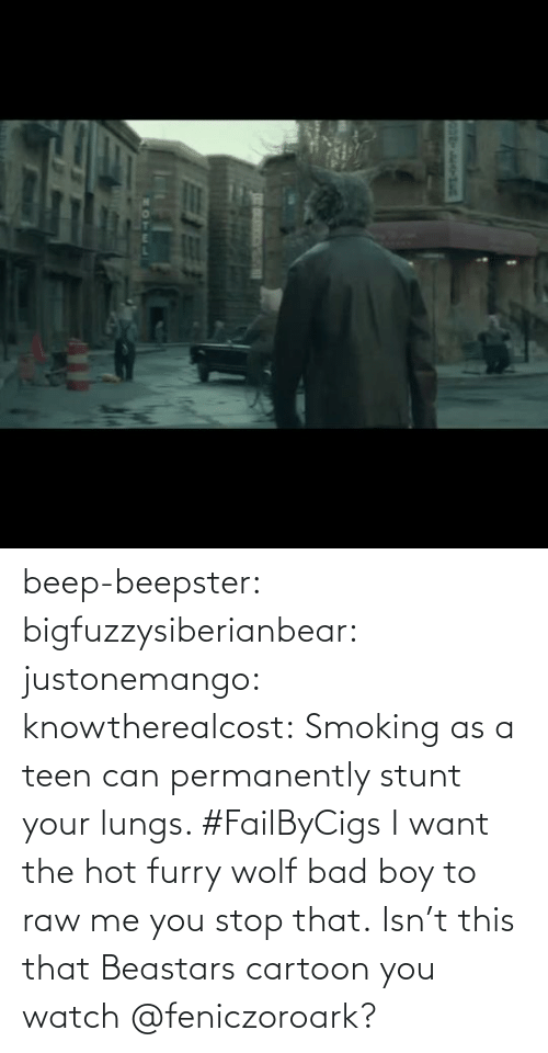 src: beep-beepster: bigfuzzysiberianbear:  justonemango:  knowtherealcost:  Smoking as a teen can permanently stunt your lungs. #FailByCigs  I want the hot furry wolf bad boy to raw me  you stop that.     Isn't this that Beastars cartoon you watch @feniczoroark?