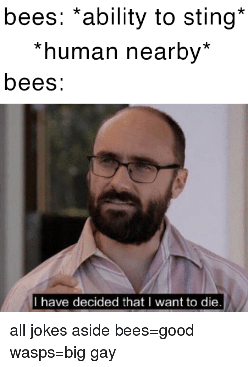 wasps: bees: *ability to sting*  *human nearby*  bees:  I have decided that I want to die all jokes aside bees=good  wasps=big gay