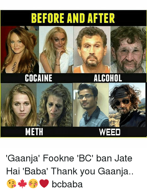 Memes, Weed, and Thank You: BEFORE AND AFTER  COCAINE  ALCOHOL  METH  WEED 'Gaanja' Fookne 'BC' ban Jate Hai 'Baba' Thank you Gaanja..😘🍁😚❤️ bcbaba