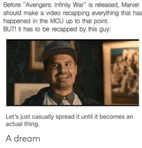 """Avengers Infinity War: Before """"Avengers: Infinity War"""" is released, Marvel  should make a video recapping everything that has  happened in the MCU up to that point.  BUT! It has to be recapped by this guy:  Let's just casually spread it until it becomes an  actual thing. A dream"""