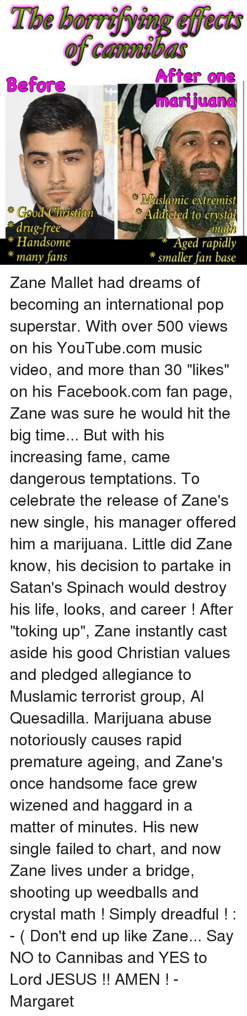 """drug free: Before  drug-free  Handsome  many fans  After one  Muslamic extremist  addicted to Crysta  mat  Aged rapidly  smaller fan base Zane Mallet had dreams of becoming an international pop superstar. With over 500 views on his YouTube.com music video, and more than 30 """"likes"""" on his Facebook.com fan page, Zane was sure he would hit the big time...  But with his increasing fame, came dangerous temptations. To celebrate the release of Zane's new single, his manager offered him a marijuana. Little did Zane know, his decision to partake in Satan's Spinach would destroy his life, looks, and career !   After """"toking up"""",  Zane instantly cast aside his good Christian values and pledged allegiance to Muslamic terrorist group, Al Quesadilla. Marijuana abuse notoriously causes rapid premature ageing, and Zane's once handsome face grew wizened and haggard in a matter of minutes. His new single failed to chart, and now Zane lives under a bridge, shooting up weedballs and crystal math ! Simply dreadful ! : - (   Don't end up like Zane... Say NO to Cannibas and YES to Lord JESUS !!   AMEN ! - Margaret"""