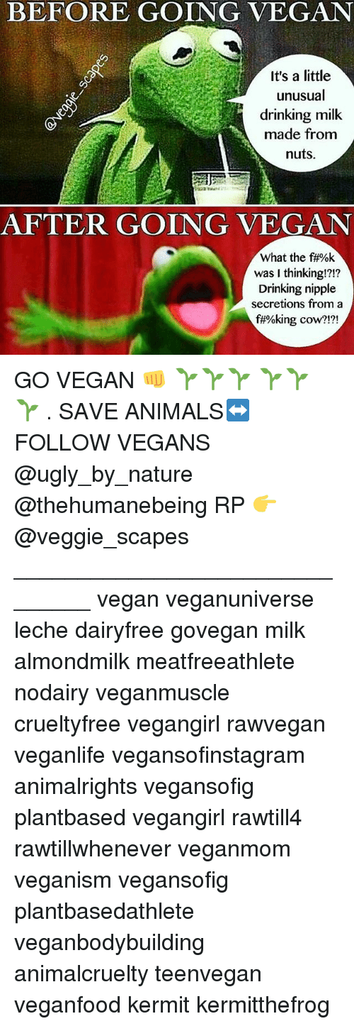 Animals, Drinking, and Memes: BEFORE GOING VEGAN  It's a little  unusual  drinking milk  A made from  nuts.  AFTER GOING VEGAN  What the f#%k  was I thinking!?!?  Drinking nipple  secretions from a  f#%king cow?  2121 GO VEGAN 👊 🌱🌱🌱 🌱🌱 🌱 . SAVE ANIMALS↔FOLLOW VEGANS @ugly_by_nature @thehumanebeing RP 👉 @veggie_scapes _______________________________ vegan veganuniverse leche dairyfree govegan milk almondmilk meatfreeathlete nodairy veganmuscle crueltyfree vegangirl rawvegan veganlife vegansofinstagram animalrights vegansofig plantbased vegangirl rawtill4 rawtillwhenever veganmom veganism vegansofig plantbasedathlete veganbodybuilding animalcruelty teenvegan veganfood kermit kermitthefrog