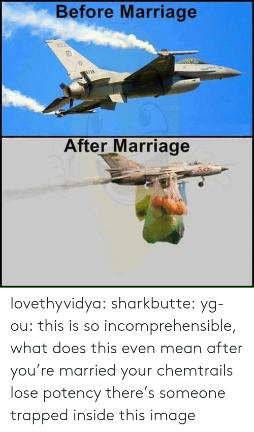 what does this even mean: Before Marriage  After Marriage lovethyvidya:  sharkbutte:  yg-ou: this is so incomprehensible, what does this even mean after you're married your chemtrails lose potency    there's someone trapped inside this image