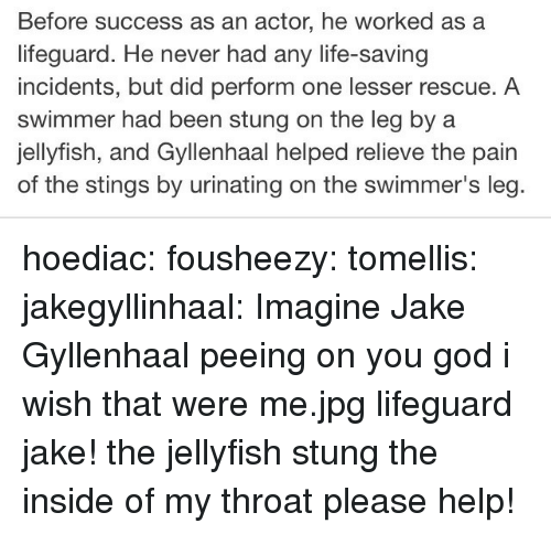 gyllenhaal: Before success as an actor, he worked as a  lifeguard. He never had any life-saving  incidents, but did perform one lesser rescue. A  swimmer had been stung on the leg by a  jellyfish, and Gyllenhaal helped relieve the pain  of the stings by urinating on the swimmer's leg hoediac: fousheezy:  tomellis:  jakegyllinhaal:  Imagine Jake Gyllenhaal peeing on you  god i wish that were me.jpg  lifeguard jake! the jellyfish stung the inside of my throat please help!