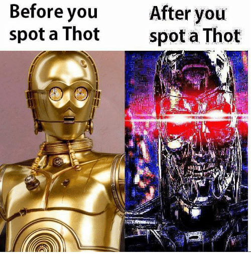 Thot Spot: Before you  After you  spot a Thot  spot a Thot