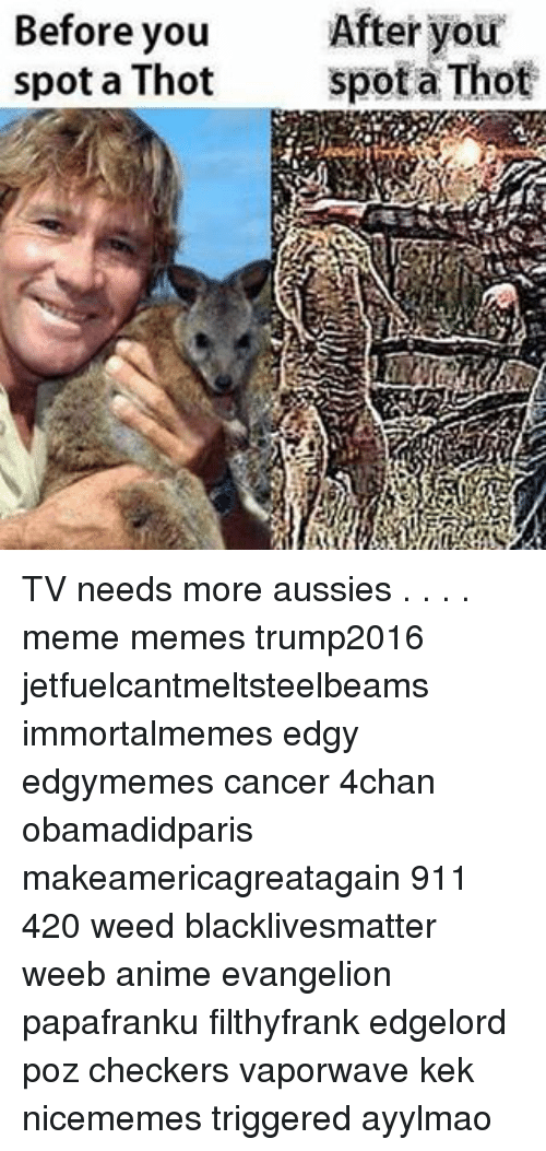 Thot Spot: Before you  After your  spot a Thot  spot a Thot TV needs more aussies . . . . meme memes trump2016 jetfuelcantmeltsteelbeams immortalmemes edgy edgymemes cancer 4chan obamadidparis makeamericagreatagain 911 420 weed blacklivesmatter weeb anime evangelion papafranku filthyfrank edgelord poz checkers vaporwave kek nicememes triggered ayylmao