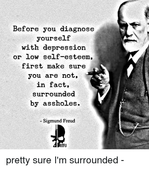 Assholl: Before you diagnose  yourself  with depression.  or low self-esteem,  first make sure  you are not,  in fact,  surrounded  by assholes.  Sigmund Freud  RTFU pretty sure I'm surrounded -