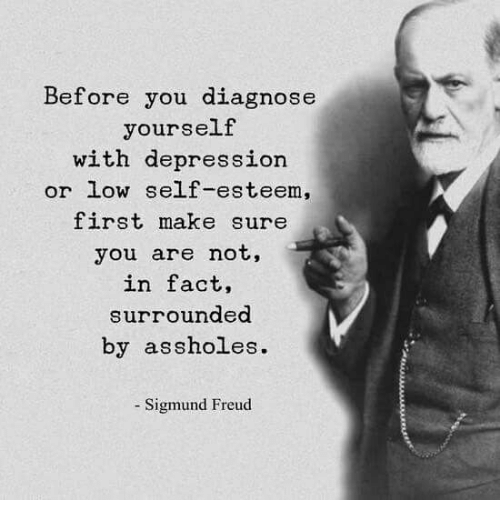 Sigmund Freud: Before you diagnose  yourself  with depression  or low sellf-esteem,  first make sure  you are not,  in fact,  surrounded  by assholes.  - Sigmund Freud