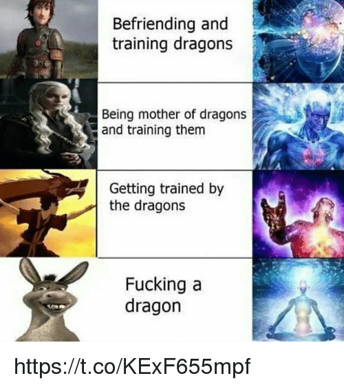 Fucking, Memes, and Dragons: Befriending and  training dragons  Being mother of dragons  and training them  Getting trained by  the dragons  Fucking a  dragon https://t.co/KExF655mpf