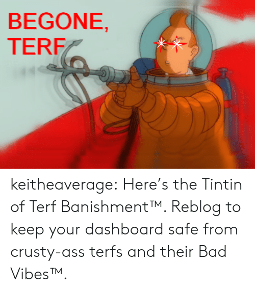 Begone: BEGONE,  TERF keitheaverage:  Here's the Tintin of Terf Banishment™. Reblog to keep your dashboard safe from crusty-ass terfs and their Bad Vibes™.