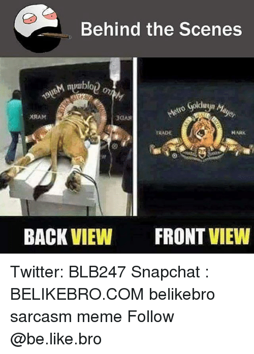 trading: Behind the Scenes  nuuublo  Goldue  XRAM  3GAR  TRADE  MARK  BACK VIEW  FRONT VIEW Twitter: BLB247 Snapchat : BELIKEBRO.COM belikebro sarcasm meme Follow @be.like.bro