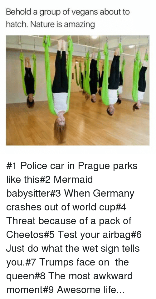 Police Car: Behold a group of vegans about to  hatch. Nature is amazing #1 Police car in Prague parks like this#2 Mermaid babysitter#3 When Germany crashes out of world cup#4 Threat because of a pack of Cheetos#5 Test your airbag#6 Just do what the wet sign tells you.#7 Trumps face on  the queen#8 The most awkward moment#9 Awesome life...