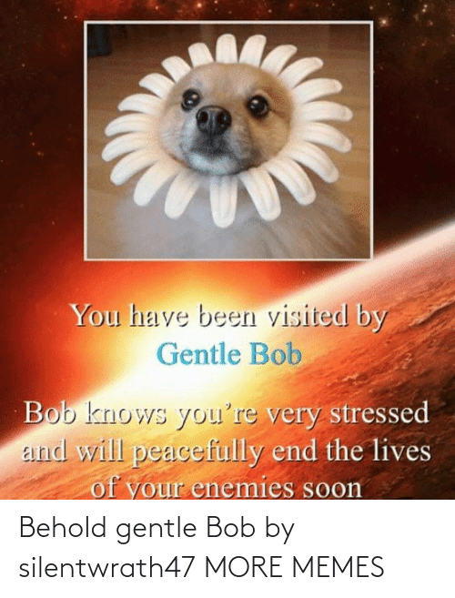 Gentle: Behold gentle Bob by silentwrath47 MORE MEMES