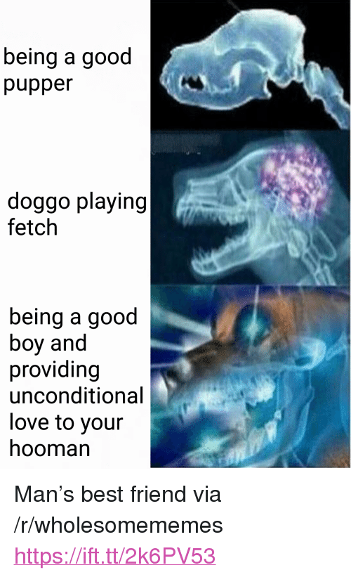 """Pupper Doggo: being a good  pupper  doggo playing  fetch  being a good  boy and  providing  unconditional  love to your  hooman <p>Man&rsquo;s best friend via /r/wholesomememes <a href=""""https://ift.tt/2k6PV53"""">https://ift.tt/2k6PV53</a></p>"""
