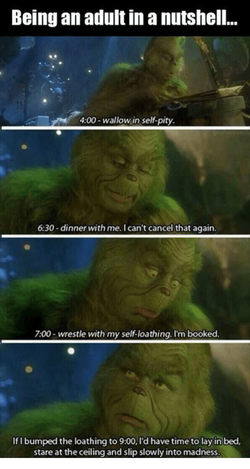 wallowed in self pity: Being an adult in a nutshell...  4:00-wallow in self-pity.  6:30-dinner with me. I can't cancel that again.  7:00 wrestle with my self-loathing. I'm booked.  If I bumped the loathing to 9:00, l'd have time to lay in bed,  stare at the ceiling and slip slowly into madness