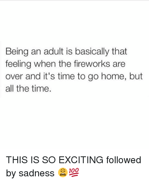 Adulter: Being an adult is basically that  feeling when the fireworks are  over and it's time to go home, but  all the time. THIS IS SO EXCITING followed by sadness 😩💯