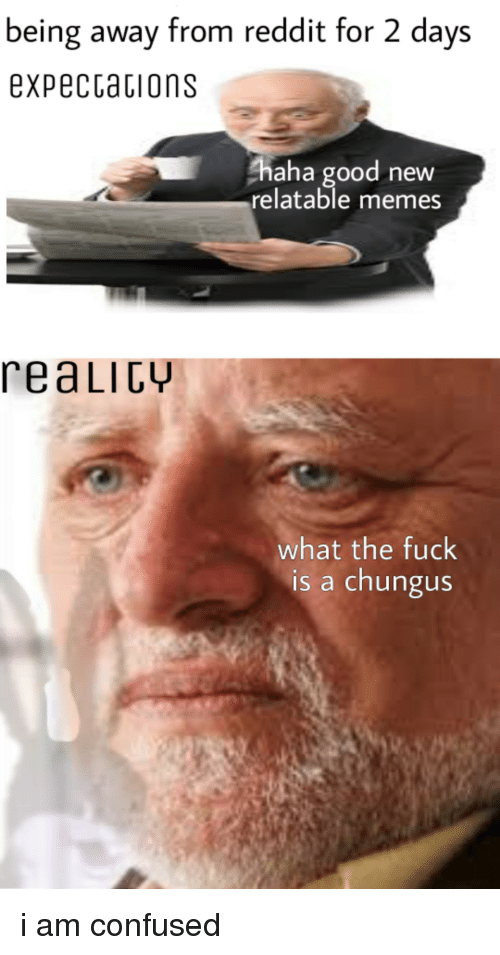 ahaha: being away from reddit for 2 days  expecCations  ahaha good new  relatable memes  reaLIcy  what the fuck  is a chungus i am confused
