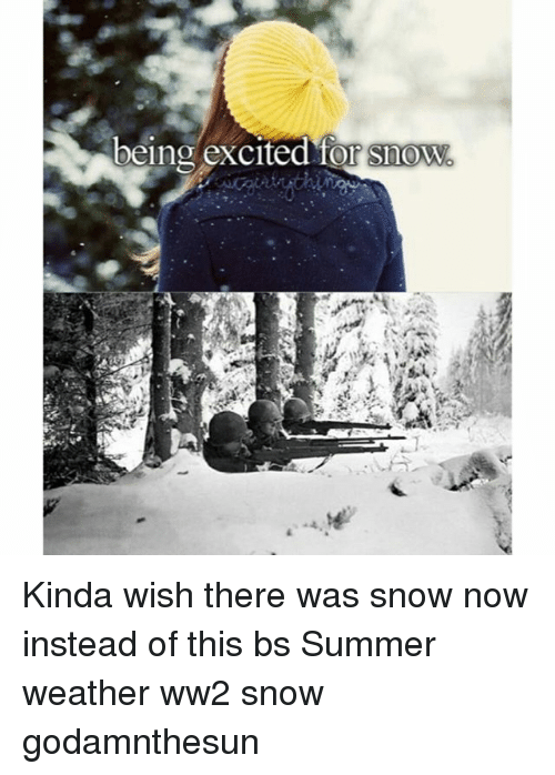 Memes, Summer, and Snow: being excited Kinda wish there was snow now instead of this bs Summer weather ww2 snow godamnthesun