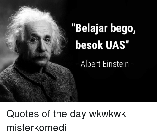 25+ Best Memes About Einstein Quotes