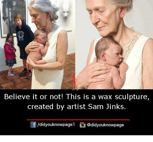 Memes, Artist, and 🤖: Believe it or not! This is a wax sculpture,  created by artist Sam Jinks.  /didyouknowpagel @didyouknowpage