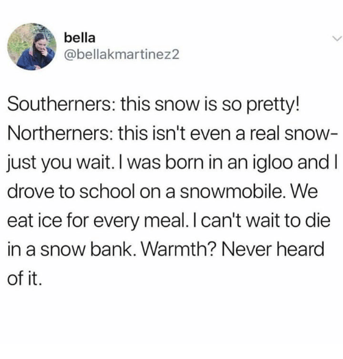 School, Bank, and Snow: bella  abellakmartinez2  Southerners: this snow is so pretty!  Northerners: this isn't even a real snow  just you wait. I was born in an igloo and I  drove to school on a snowmobile. We  eat ice for every meal. I can't wait to die  in a snow bank. Warmth? Never heard  of it.