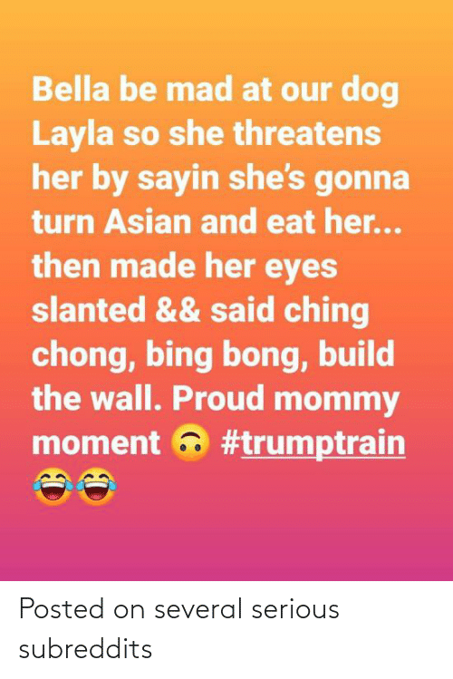 build-the-wall: Bella be mad at our dog  Layla so she threatens  her by sayin she's gonna  turn Asian and eat her...  then made her eyes  slanted && said ching  chong, bing bong, build  the wall. Proud mommy  moment a Posted on several serious subreddits