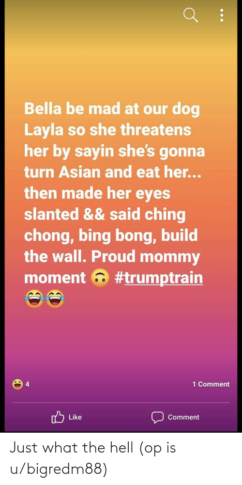 build-the-wall: Bella be mad at our dog  Layla so she threatens  her by sayin she's gonna  turn Asian and eat her...  then made her eyes  slanted && said ching  chong, bing bong, build  the wall. Proud mommy  moment a #trumptrain  4  1 Comment  nל  Like  Comment Just what the hell (op is u/bigredm88)