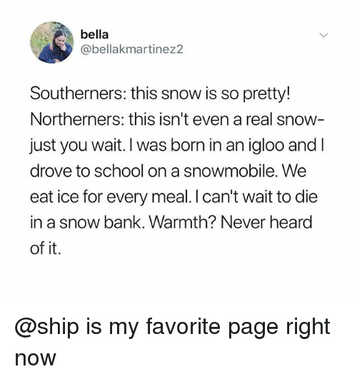 School, Bank, and Snow: bella  @bellakmartinez2  Southerners: this snow is so pretty!  Northerners: this isn't even a real snow  just you wait. I was born in an igloo and l  drove to school on a Snowmobile. We  eat ice for every meal.I can't wait to die  in a snow bank. Warmth? Never heard  of it. @ship is my favorite page right now