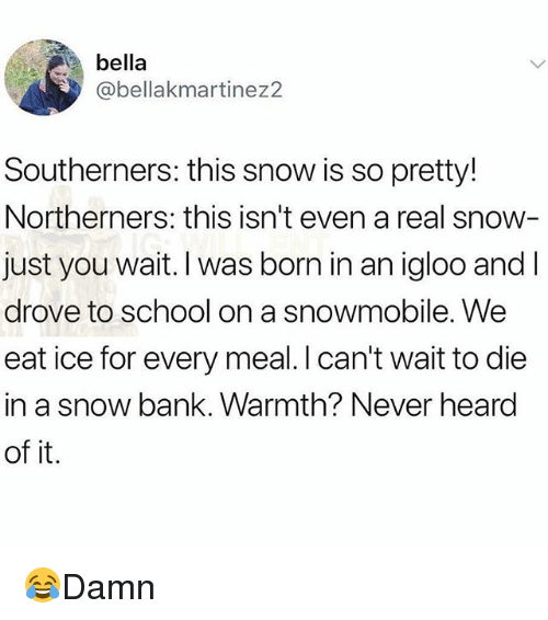 Memes, School, and Bank: bella  @bellakmartinez2  Southerners: this snow is so pretty!  Northerners: this isn't even a real snow  just you wait. I was born in an igloo and l  drove to school on a snowmobile. We  eat ice for every meal. I can't wait to die  in a snow bank. Warmth? Never heard  of it. 😂Damn