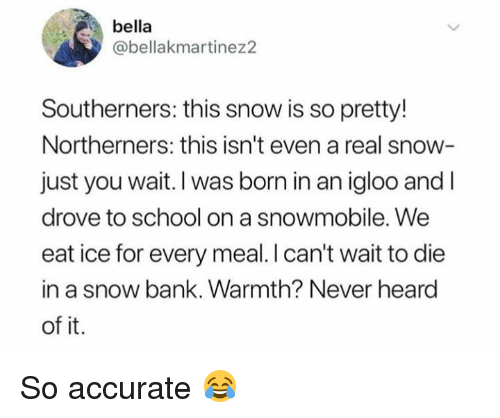 Dank, School, and Bank: bella  @bellakmartinez2  Southerners: this snow is so pretty!  Northerners: this isn't even a real snow-  just you wait. I was born in an igloo and I  drove to school on a snowmobile. We  eat ice for every meal. I can't wait to die  in a snow bank. Warmth? Never heard  of it. So accurate 😂