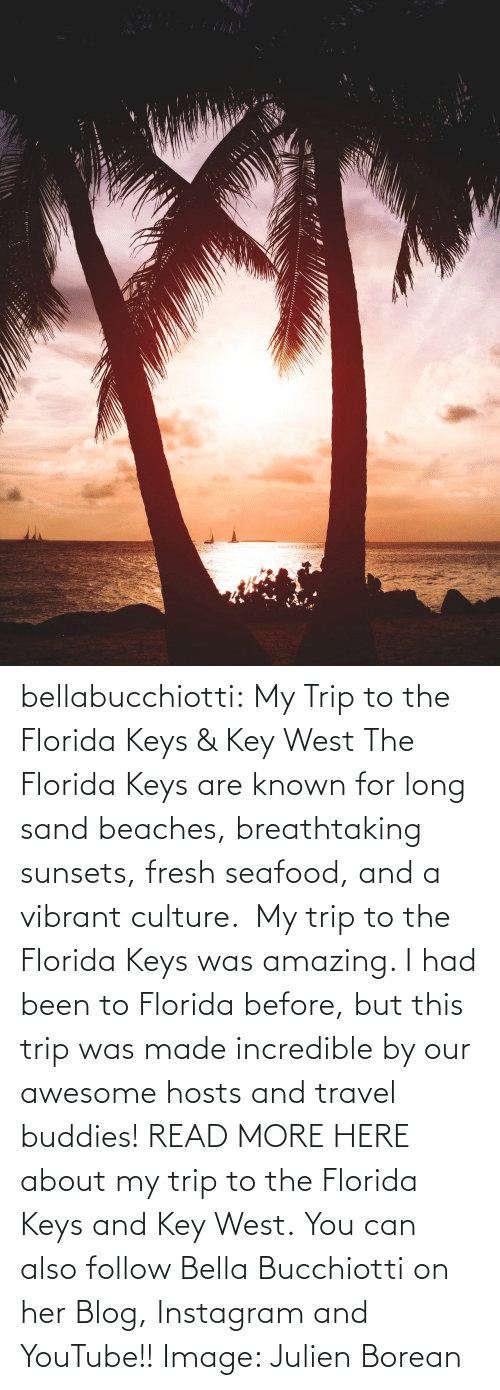 Travel: bellabucchiotti: My Trip to the Florida Keys & Key West  The Florida Keys are known for long sand beaches, breathtaking sunsets,  fresh seafood, and a vibrant culture.  My trip to the Florida Keys was  amazing. I had been to Florida before, but this trip was made incredible  by our awesome hosts and travel buddies!  READ MORE HERE about my trip to the Florida Keys and Key West. You can also follow Bella Bucchiotti on her Blog, Instagram and YouTube!! Image:     Julien Borean
