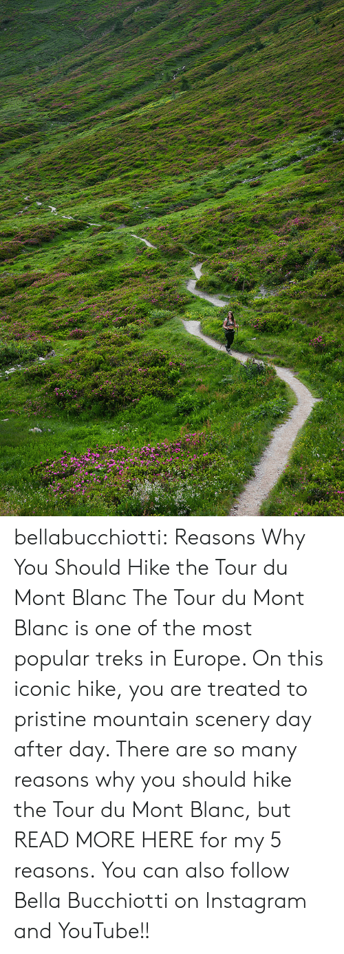 most popular: bellabucchiotti:  Reasons Why You Should Hike the Tour du Mont Blanc   The Tour du Mont Blanc is one of the most popular treks in Europe. On  this iconic hike, you are treated to pristine mountain scenery day after  day. There are so many reasons why you should hike the Tour du Mont  Blanc, but READ MORE HERE for my 5 reasons.   You can also follow Bella Bucchiotti on Instagram and YouTube!!