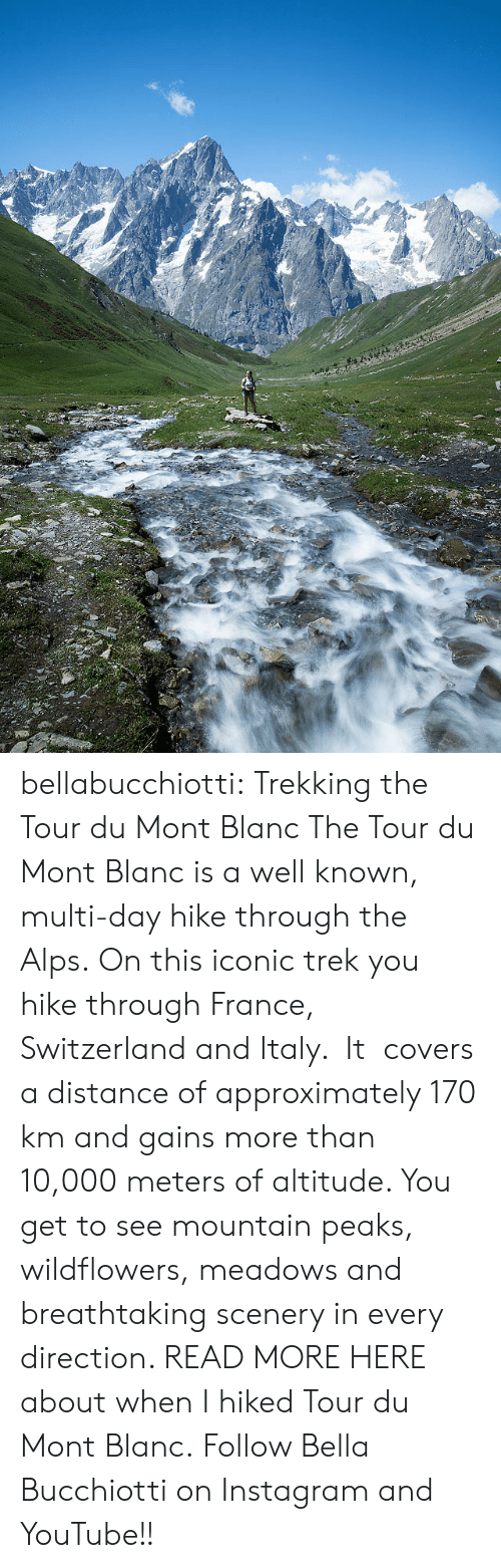 gains: bellabucchiotti: Trekking the Tour du Mont Blanc   The Tour du Mont Blanc is a well known, multi-day hike through the Alps.  On this iconic trek you hike through France, Switzerland and Italy. It  covers a distance of approximately 170 km and gains more than 10,000  meters of altitude. You get to see mountain peaks, wildflowers, meadows  and breathtaking scenery in every direction.   READ MORE HERE about when I hiked Tour du Mont Blanc.  Follow Bella Bucchiotti on Instagram and YouTube!!