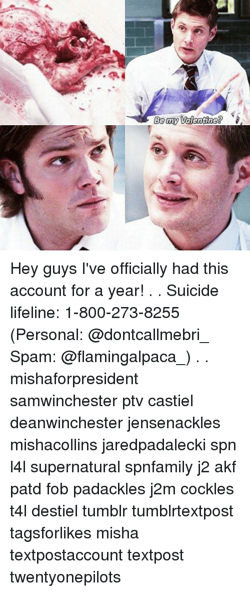 25+ Best Memes About Padackles   Padackles Memes