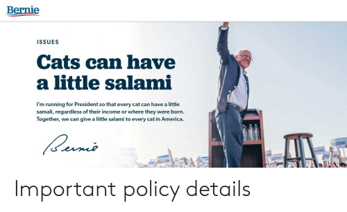 policy: Bernie  ISSUES  Cats can have  a little salami  I'm running for President so that every cat can have a little  samali, regard less of their income or where they were born.  Together, we can give a little salami to every cat in America.  ernie  crnie  mie  Be de  AK Important policy details